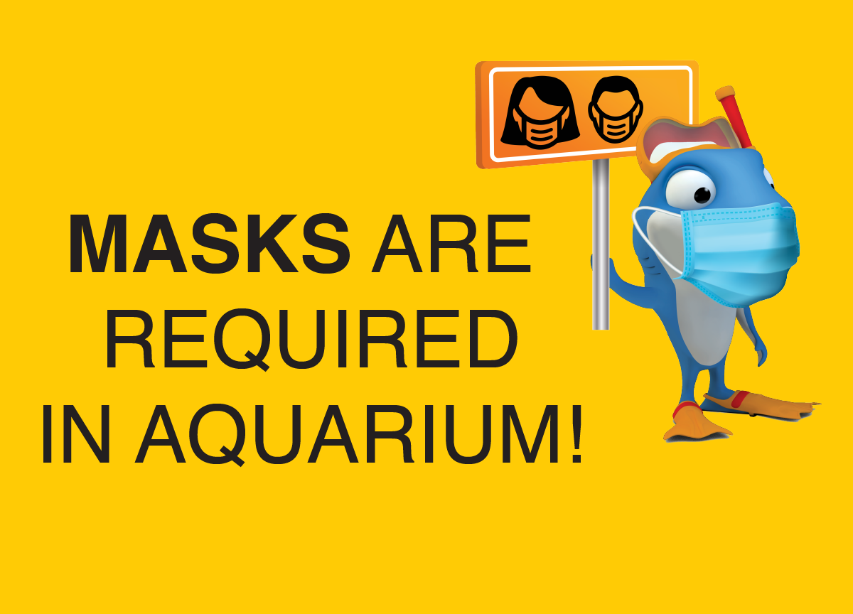 It is mandatory to wear a mask in the aquarium